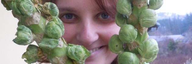 Eko skrzyneczka z warzywami