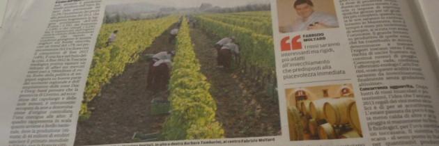 Toskańskie wino 2013