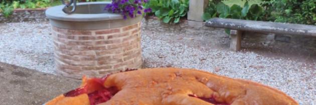 Włoskie ciasto z renklodami