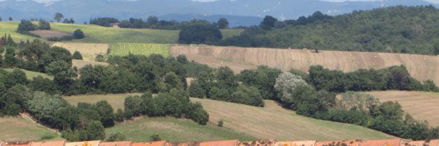 Prezydent Toskanii ogłasza gminę Chiusi w czerwonej strefie