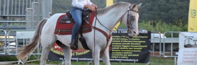 Carraia – zawody i targi końskie