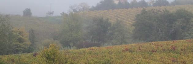 Jesienna Toskania