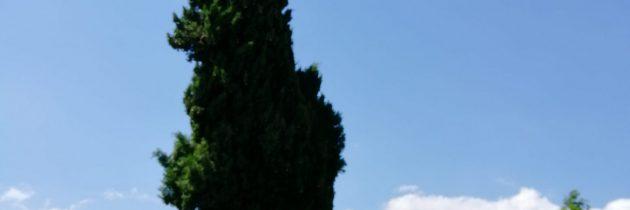 Jechać czy nie do Toskanii?