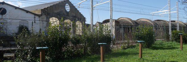 Nieznany park i opuszczone budynki Bredy