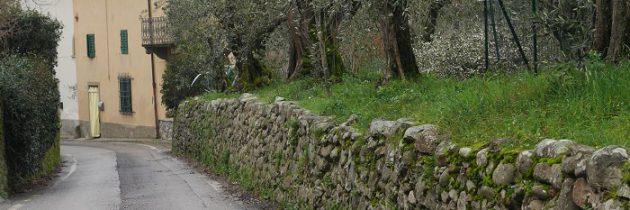Mocno w kratkę i trekking do Valdibrana