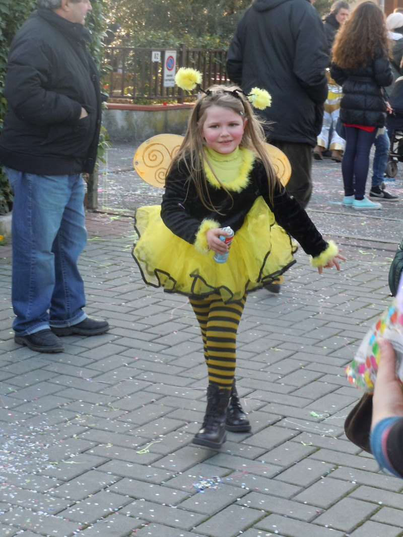 pszczola_karnawal_bagnone