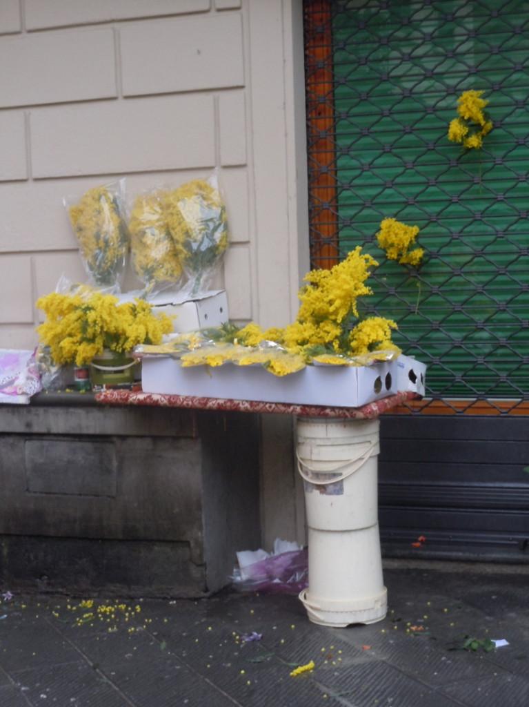 dzien_kobiet_kwiaty_plac_sali_pistoia_moja_toskania