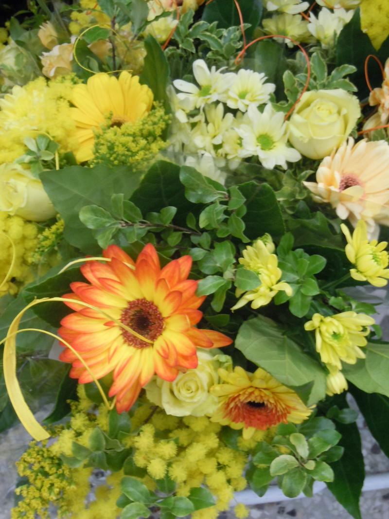 dzien_kobiet_rozne_kwiaty_pistoia_moja_toskania