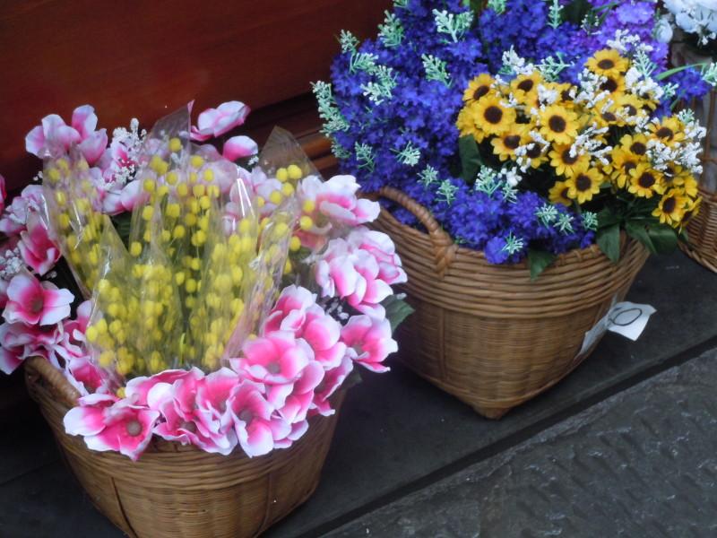 sztuczne_kwiaty_mimoza_dzien_kobiet_pistoia_moja_toskania