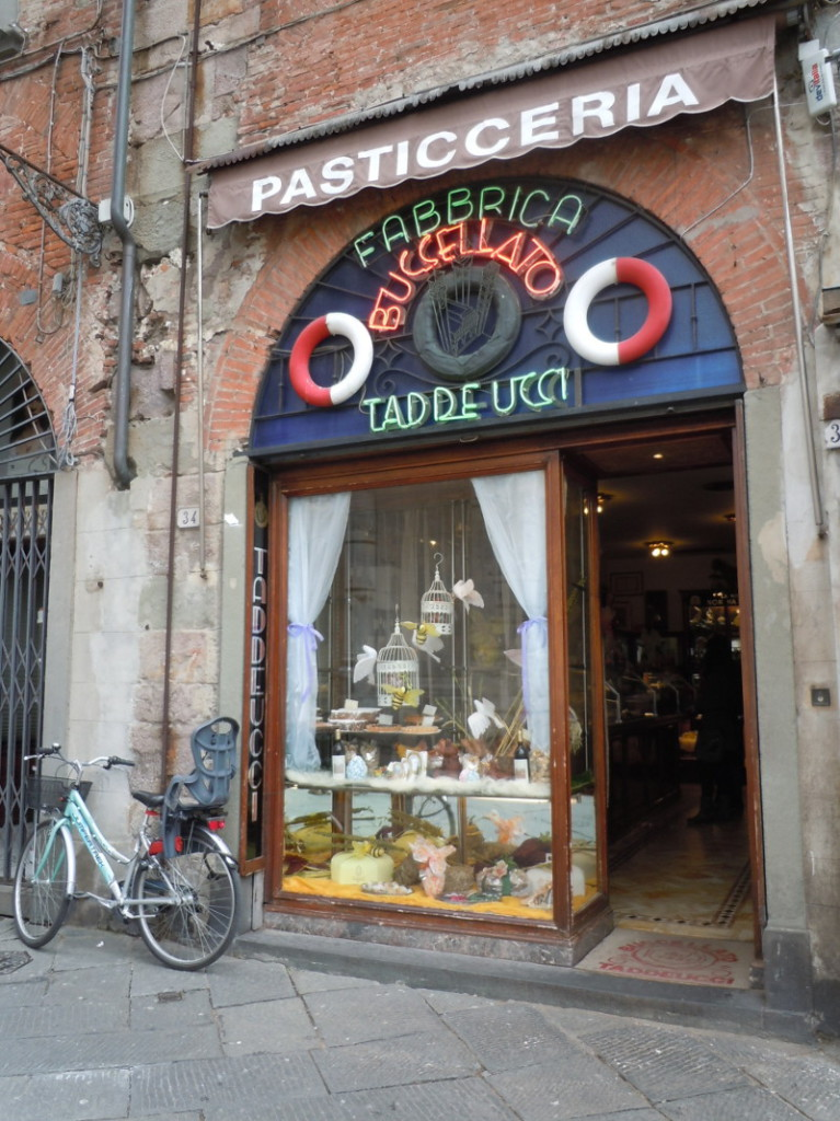 buccellato_taddeucci_lukka_lucca_moja_toskania