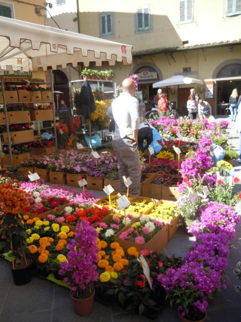 kwiaty_na_targu_w_pistoi_moja_toskania