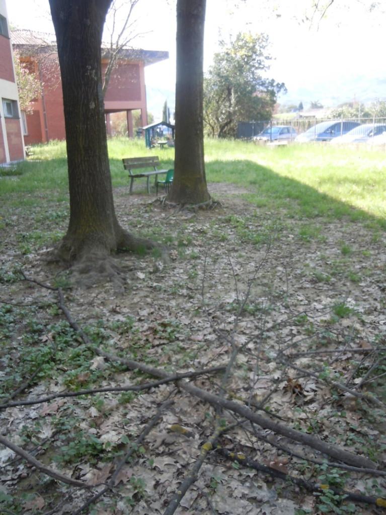 Ogrod przed przedszkolem