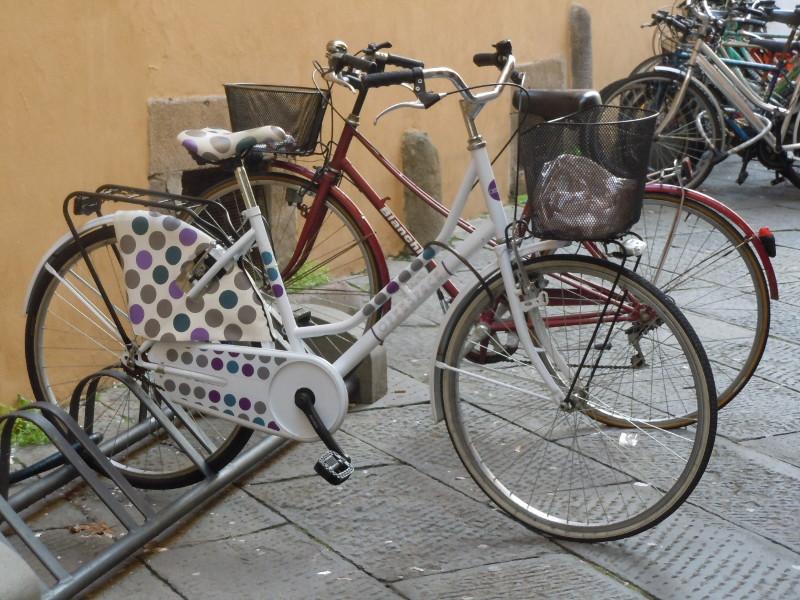 rower_w_kropki_lukka_moja_toskania