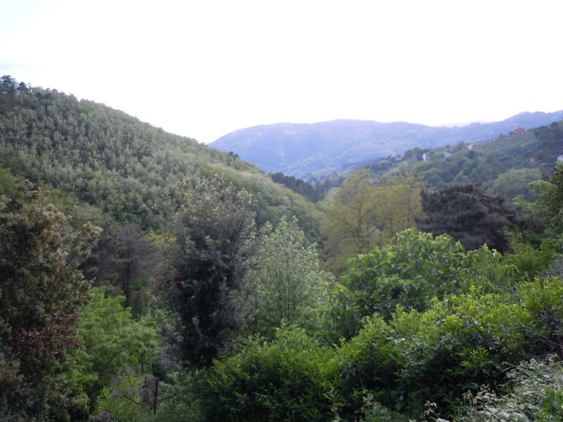 widok_na_gory_pistoi_moja_toskania