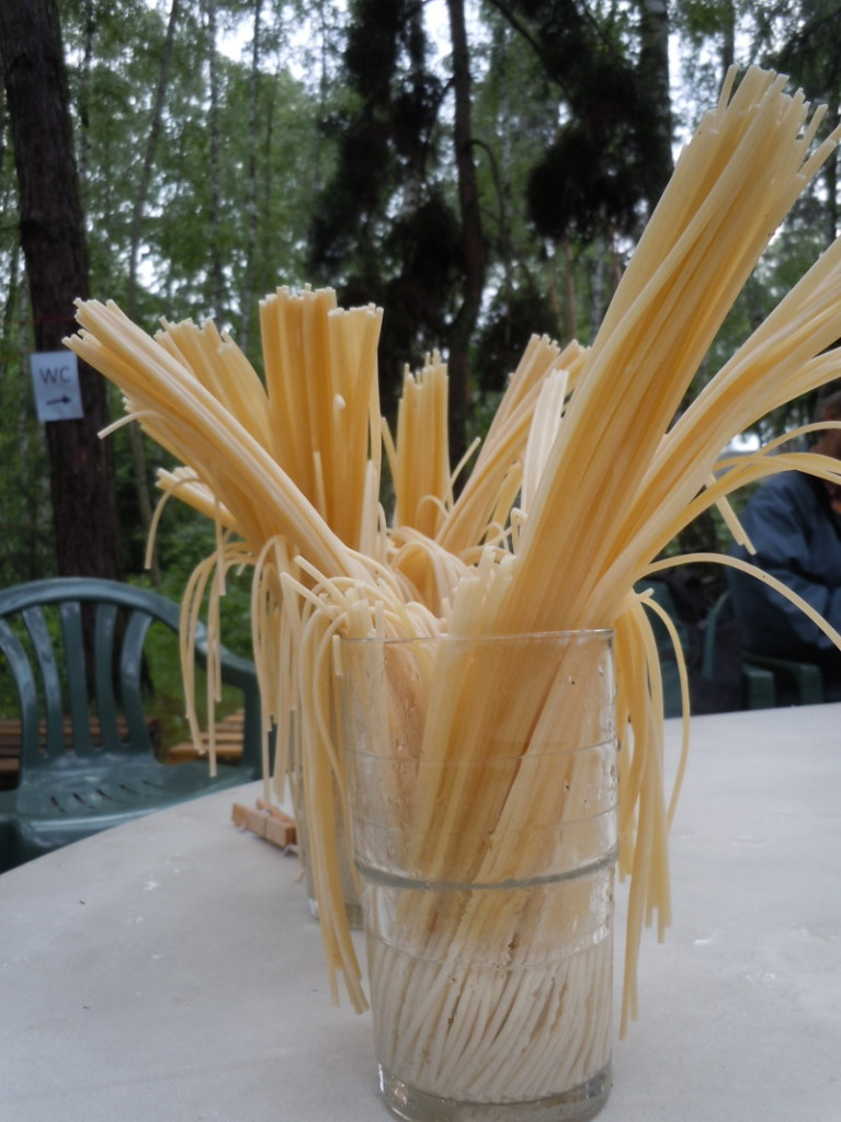 mokre_Spaghetti_moja_toskania_podkowa_lesna