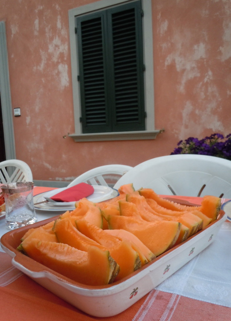 melon_moja_toskania_zielone_okiennice