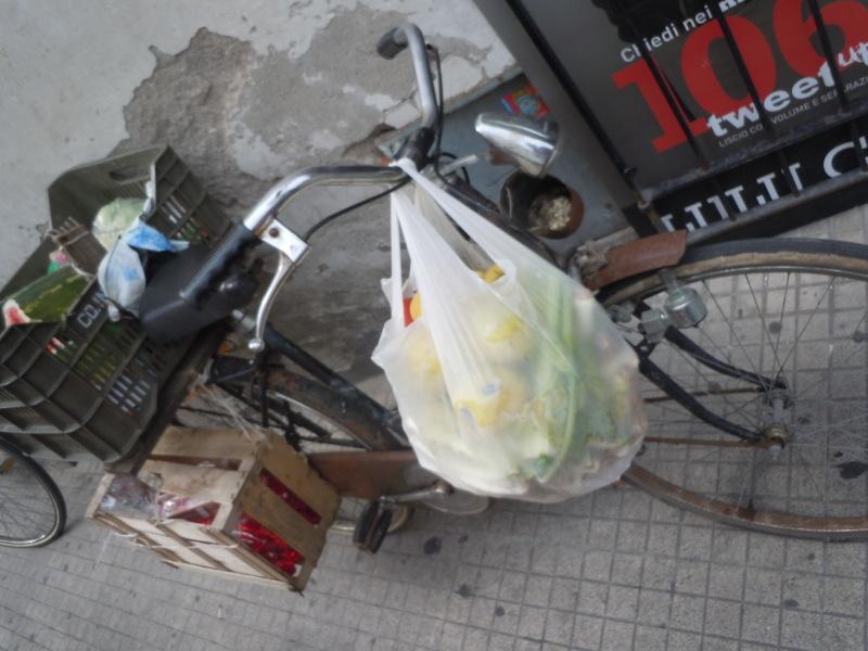 rower_z_Siatkami_moja_toskania_pistoia