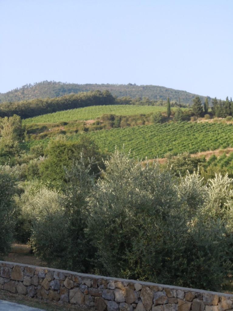 toskanska_panorama_moja_toskania