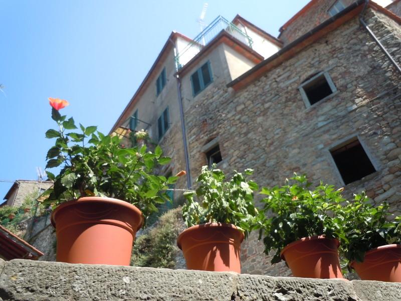 kwiaty_w_doniczkach_moja_toskania_san_quirico