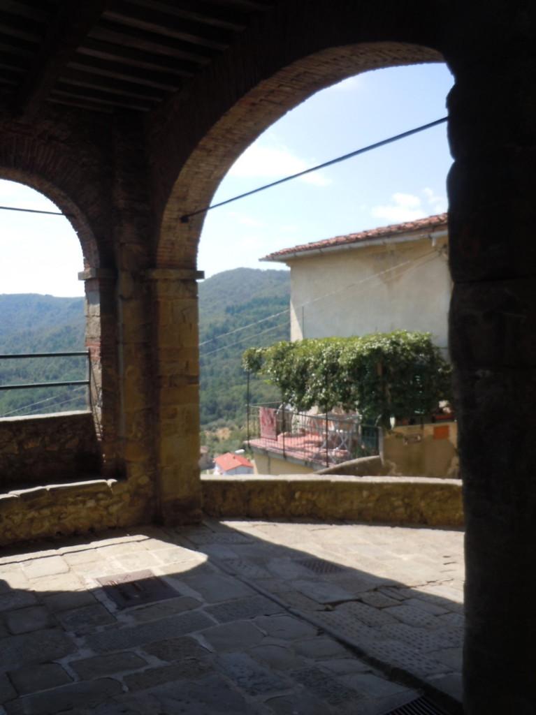 luki_w_San_quirico_moja_toskania