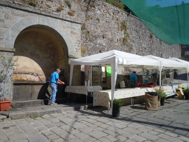 plac_i_przygotowania_do_festy_moja_toskania_castelvecchio_di_pescia