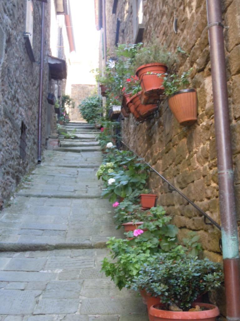 uliczka_z_donicami_w_vellano_moja_toskania