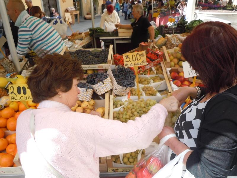 babcia_maria_wybiera_winogrona_moja_toskania_pistoia_targ