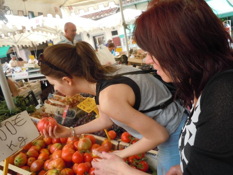 wybieranie_pomidorow_moja_toskania_pistoia_targ