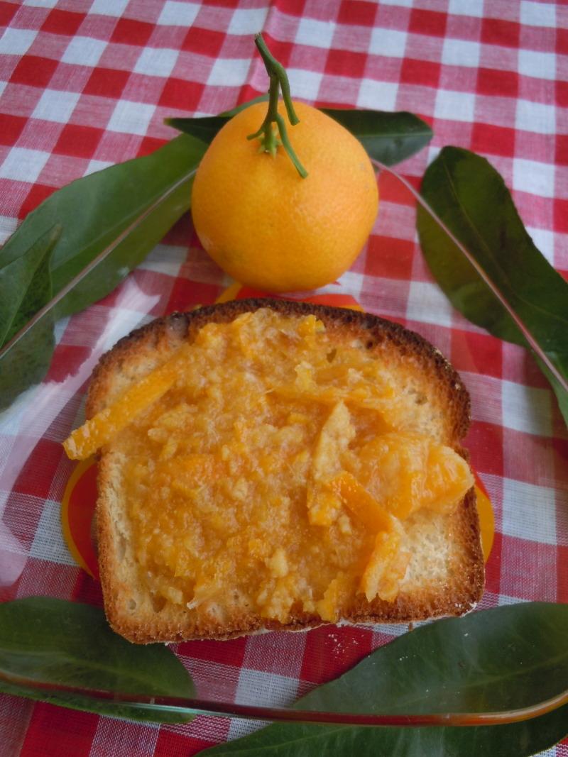 marmellata_di_clementine_moja_toskania