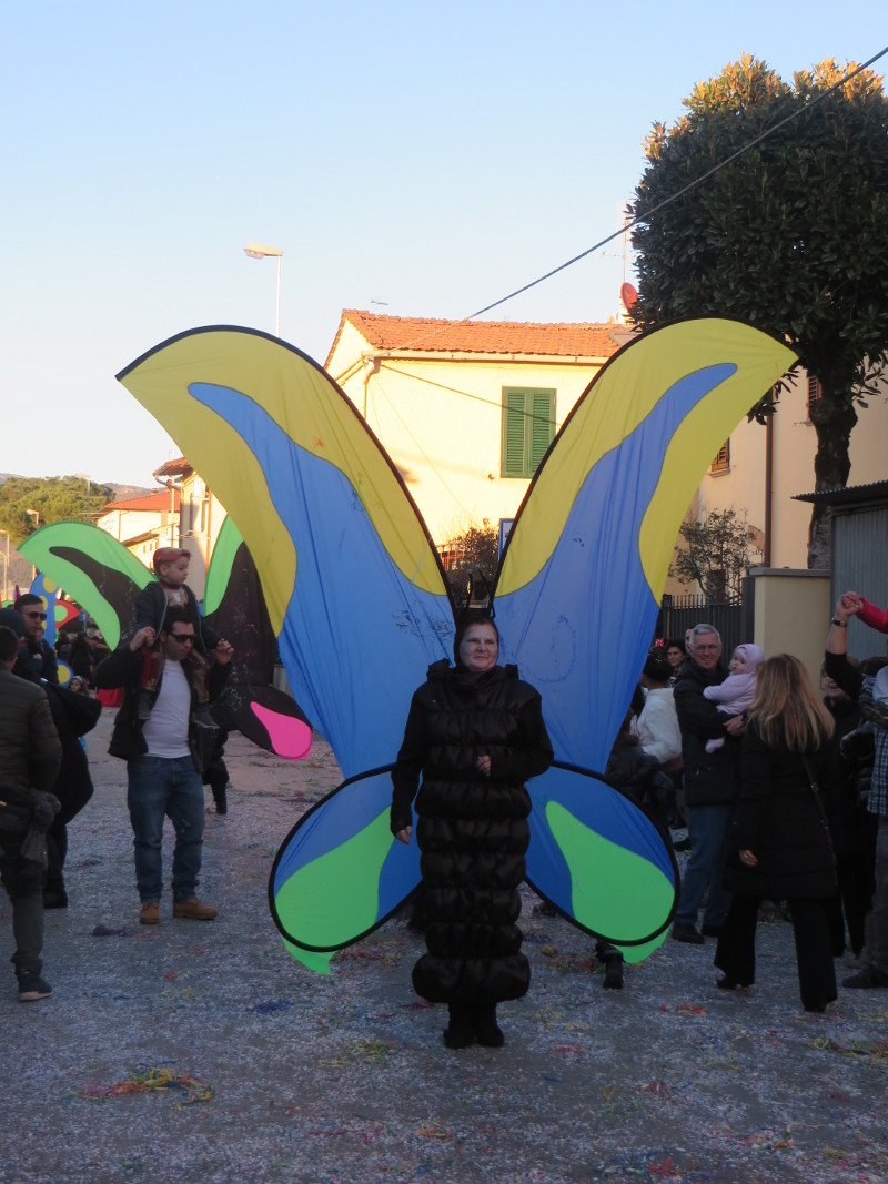 przebranie_motyl_paperino_prato_moja_toskania