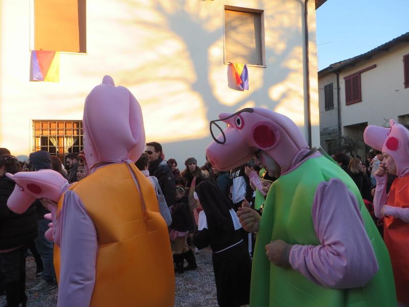 swinie_pig_moja_toskania_paperino_moja_toskania