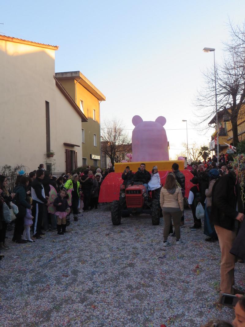 woz_ze_swinka_pig_paperino_prato_moja_toskania