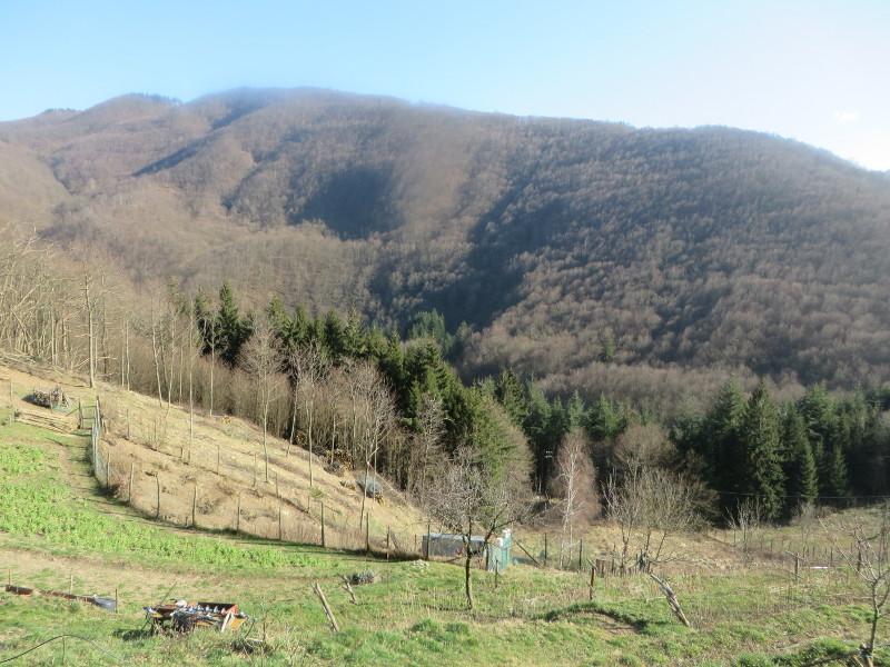 gory_w_pontepetri_moja_toskania