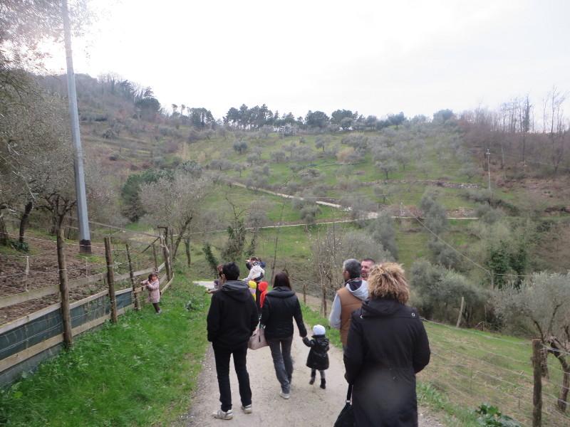 spacer_do_zwierzat_moja_toskania