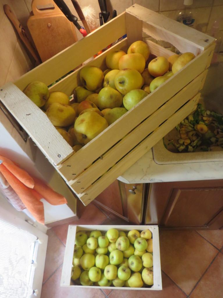 jablka_moja_toskania_30_kg