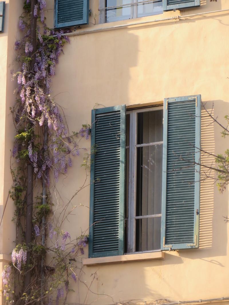 okno_toskanskie_i_kwiaty_fioletowe_moja_toskania_piza