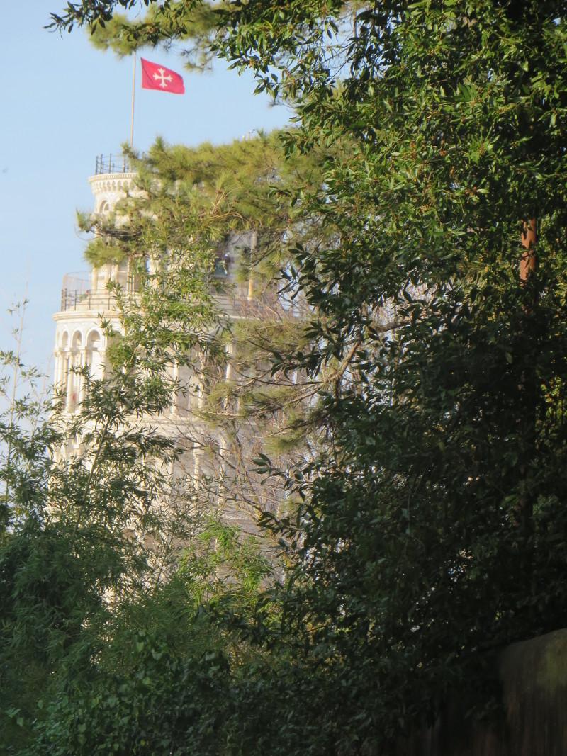 wieza_w_pizie_za_drzewami_moja_toskania