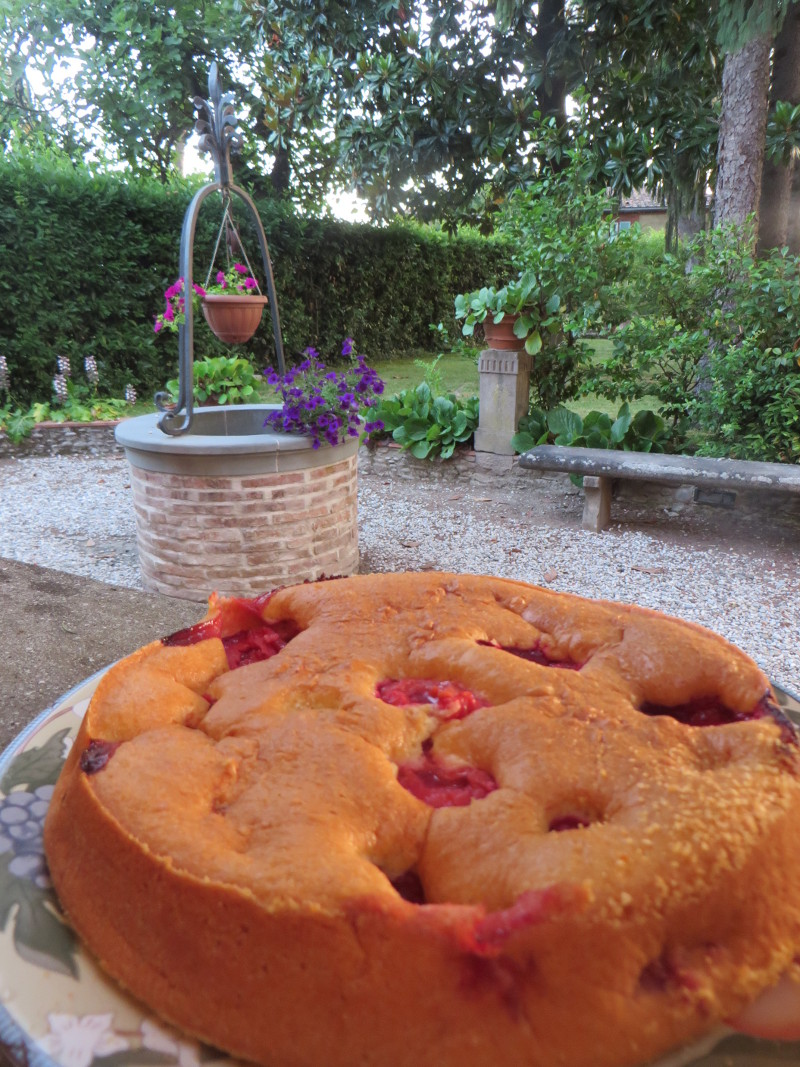 ciasto_z_renklodami_marlia_moja_toskania