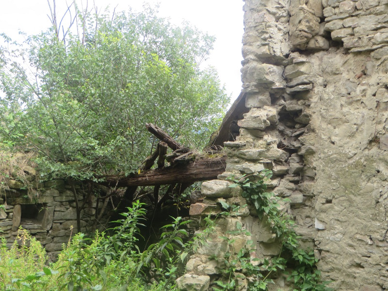belki_w_opustoszalym_domu_moja_Toskania