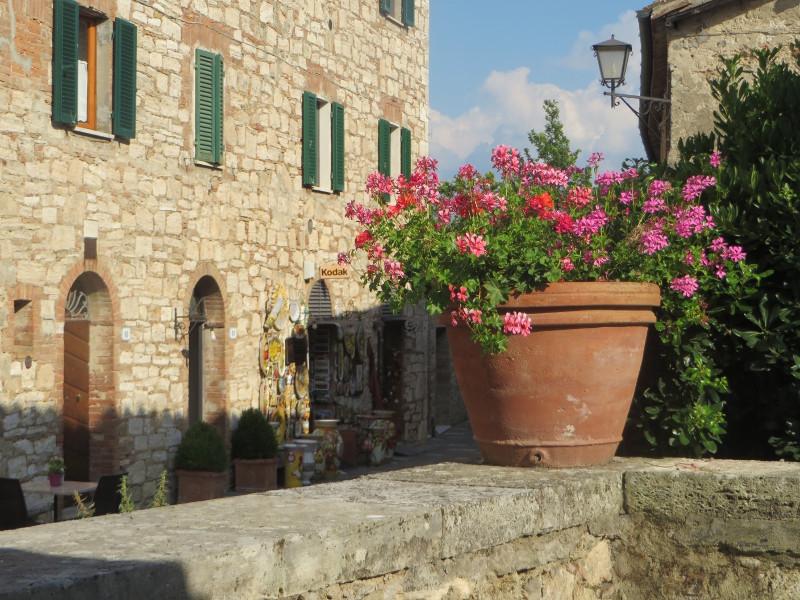 kwiaty_w_doniczce_bagno_vignoni_moja_toskania