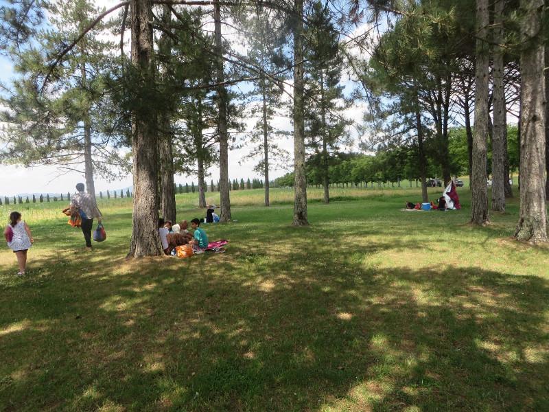 teren_piknikowy_san_galgano_moja_toskania
