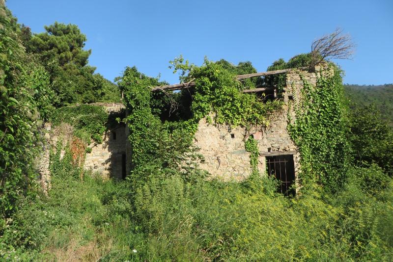 kolejna_ruina_mirteto_moja_Toskania