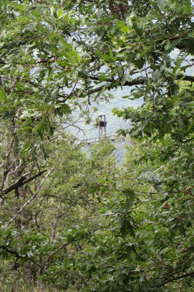 krzyz_za_drzewami_vico_pancellorum_moja_Toskania