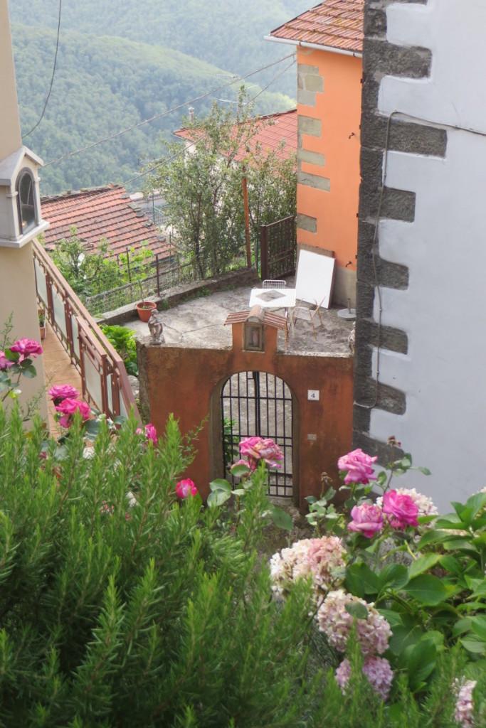 kwiaty_crasciana_moja_toskania