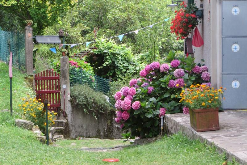 kwiaty_lagacci_moja_toskania