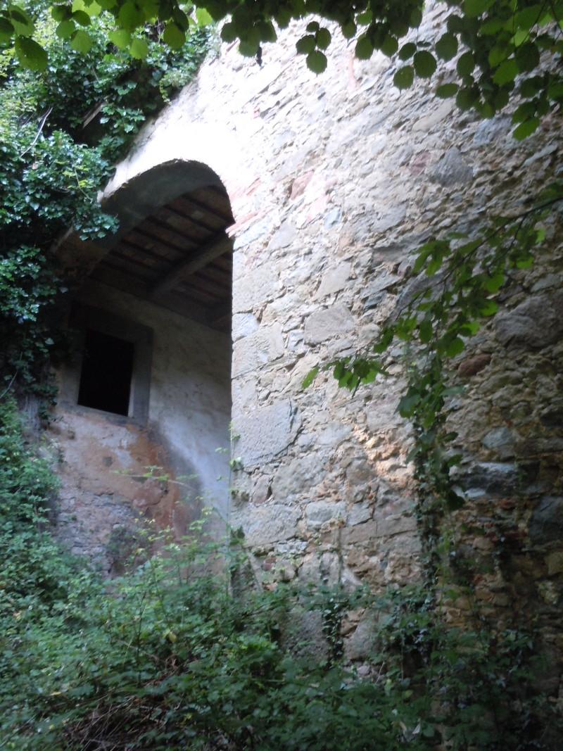 ogromny_luk_buiano_bugnano_moja_Toskania