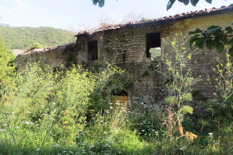 opuszczone_budynki_moja_toskania_mirteto