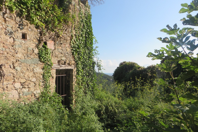panorama_ruina_mirteto_moja_toskania