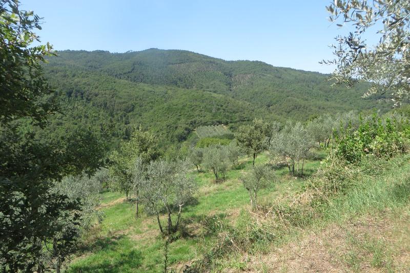 panorama_z_calbi_moja_Toskania