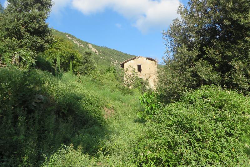 pierwszy_dom_mirteto_moja_toskania